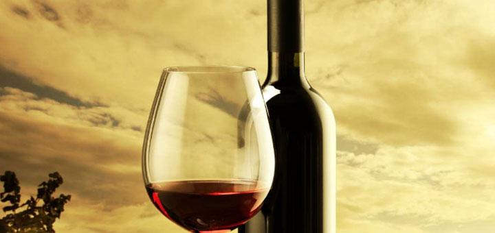 5 Incredible wine stops