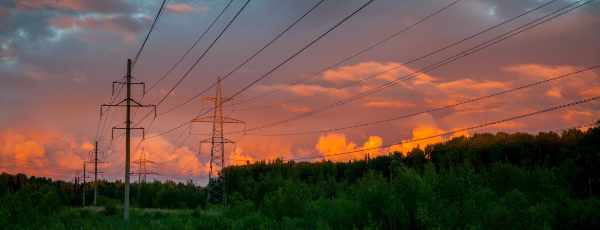 Electro-Federation Canada. Powerlines surrounded by trees and an orange, red and pink sky behind.