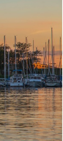 Sarnia, Ontario, a row of sailboats at a dock near sunset.