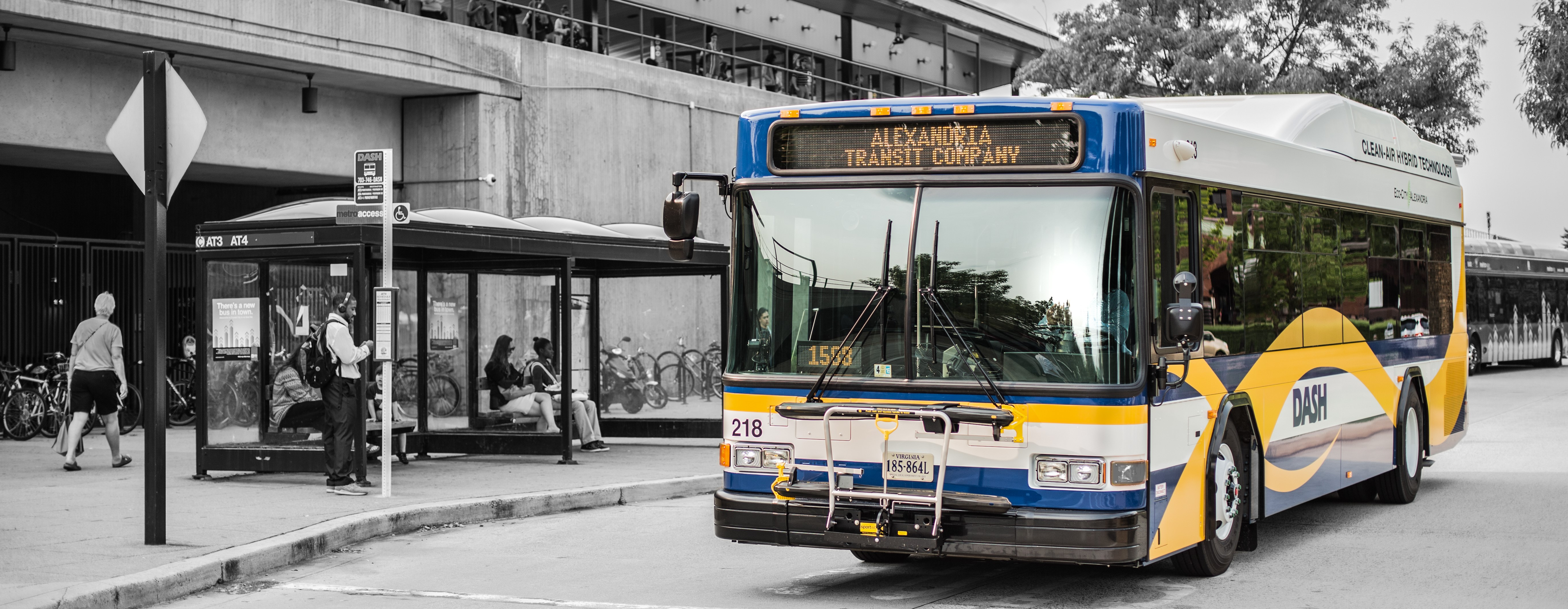 the alexandria transit company - welcome aboard | business view magazine