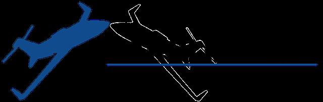 Carolina GSE logo
