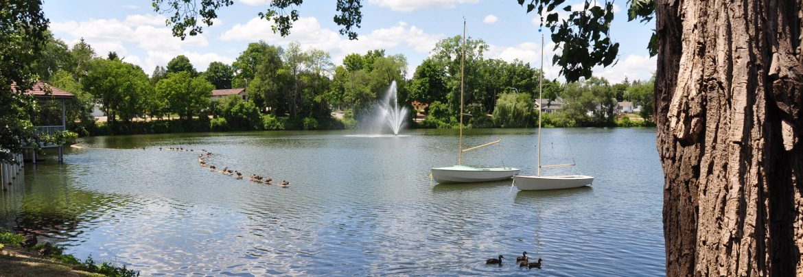 Tillsonburg Ontario. Summertime view of a lake with ducks floating with two sailboats behind.