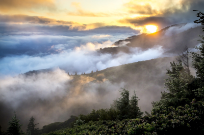 United States Environmental Protection Agency. A mountainside with green trees peaking through dense fog and the sun peaking through in the background.