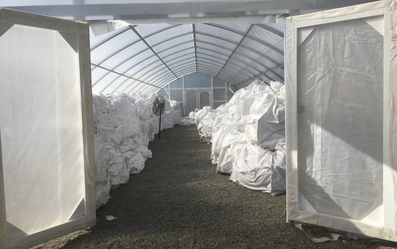 Global Hemp Group Inc. view inside a greenhouse storing bags of product.
