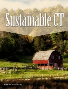 Sustainable CT brochure cover.