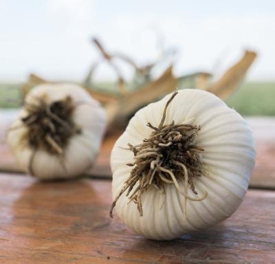 Wakunaga of America garlic.