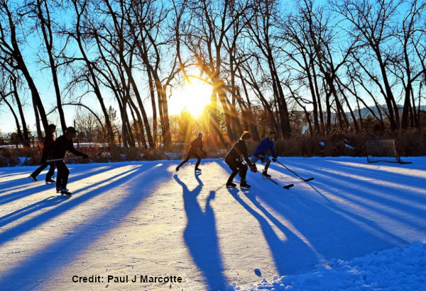 Longmont, Colorado pond hockey with sun shining between trees in the background.
