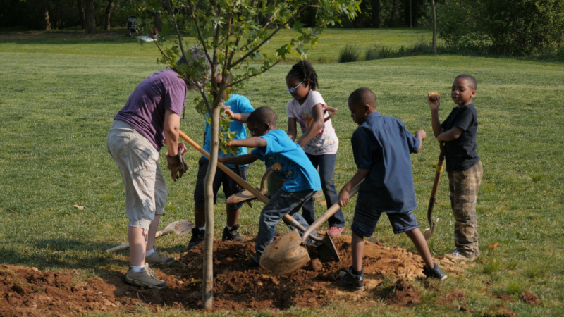 Ashville, North Carolina tree planting with an adult and kids.