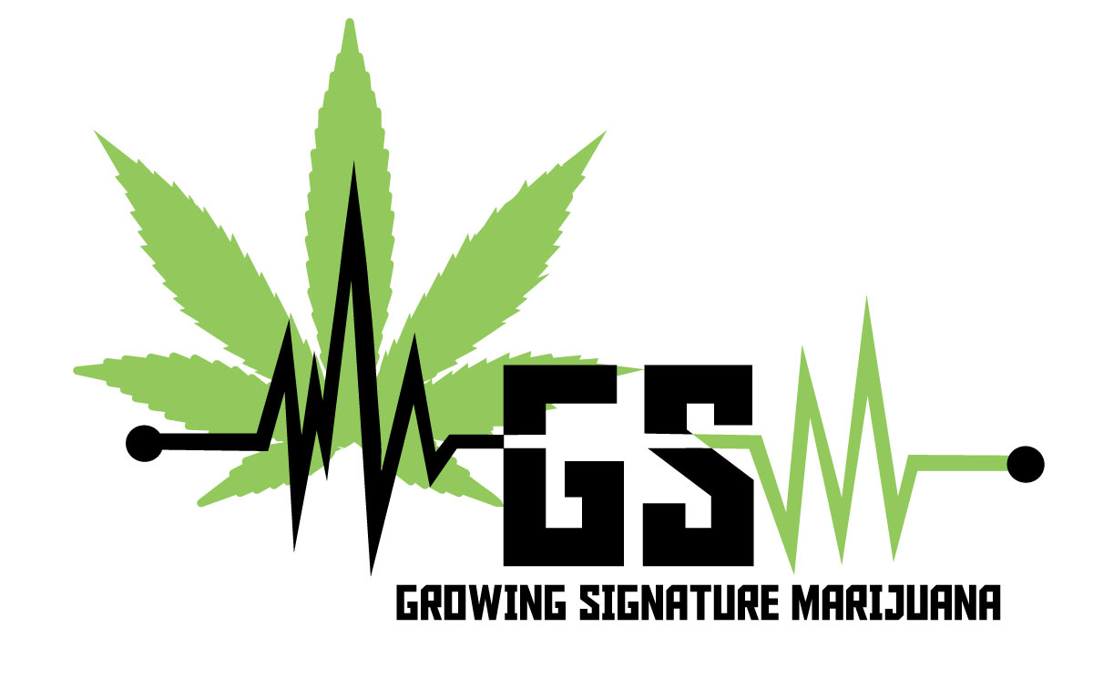 GSM, Growing Signature Marijuana logo. Click to email.
