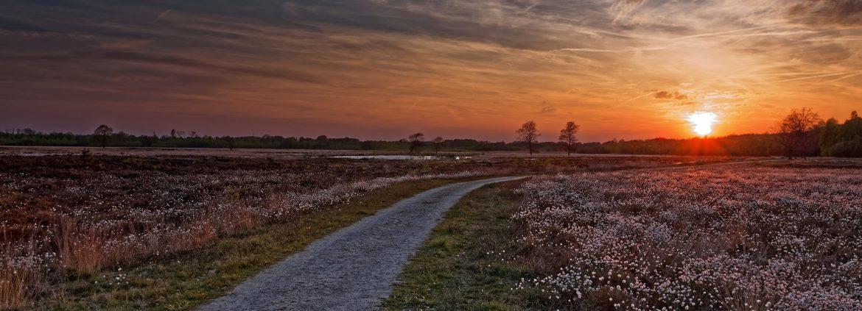 Bloomfield, New Jersey sunset.