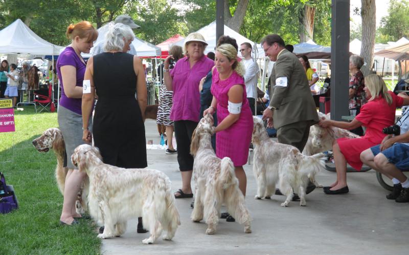 Island Grove Regional Park dog show.