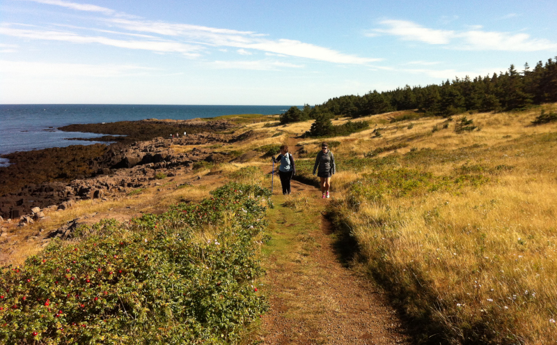 Digby, Nova Scotia Brier Island western shoreline trail.
