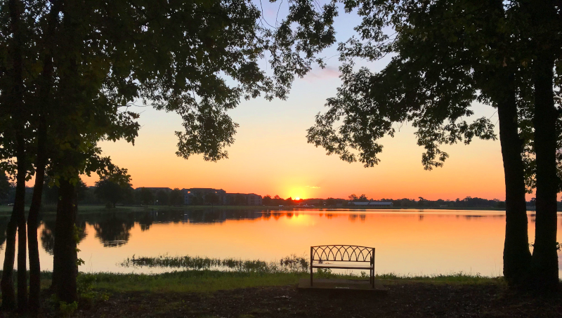 Maumelle, Arkansas lake view at sunset with a bench in between trees in front of the water.