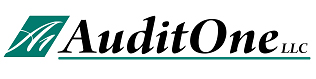 Audit One