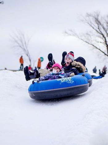 Franklin - Fun in the snow