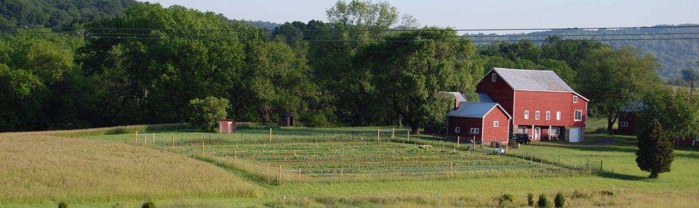 Readington Township, New Jersey Dobo Farm Park