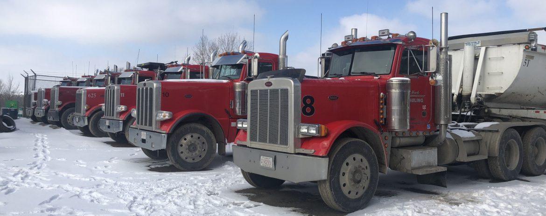 Linaweaver Semi trucks in a row in snow.